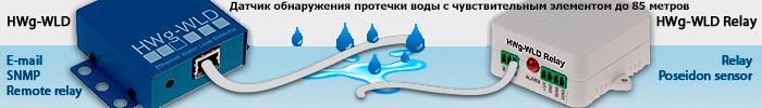 HWg-WLD: Сетевой детектор протечки воды на 2 зоны
